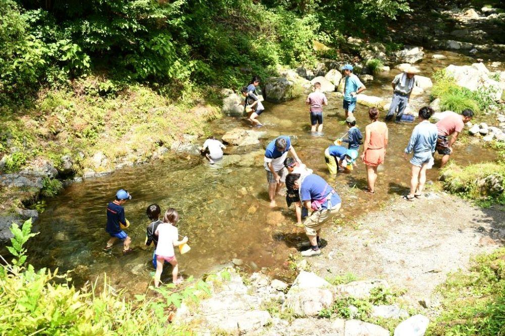 中央区の森親子自然体験ツアー
