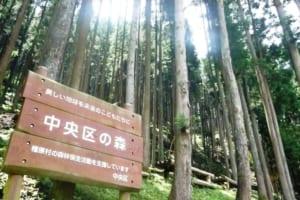 中央区の森